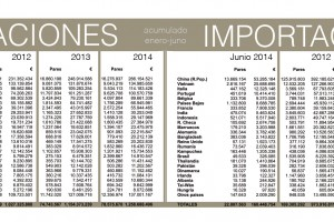 Balanza comercial del calzado: enero – junio 2014