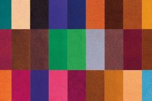 Software para predecir la toxicidad de los colorantes del cuero