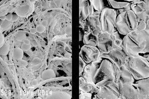 Microcápsulas multifuncionales de elevada resistencia mecánica y térmica