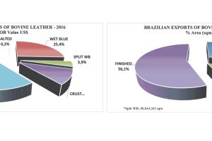 2016, «un año extremadamente difícil» para la piel de Brasil