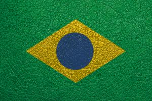 La industria de la curtición en Brasil