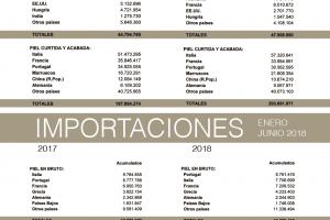 Balanza comercial de la piel: junio 2018