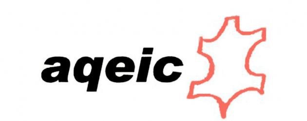 Aqeic disuelve la Fundación Química Española de la Industria del Cuero