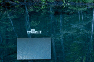 «It´s natural, it´s leather», nuevo catálogo de Texcur
