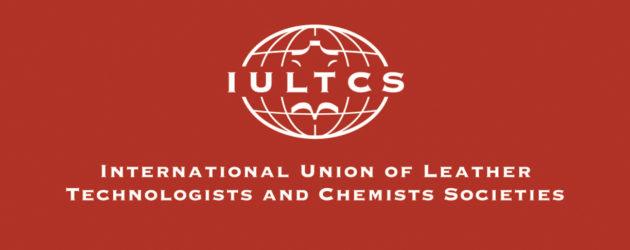 Iultcs presenta la sexta edición de las becas YLSG