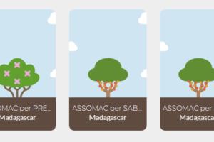 Assomac plantará 500 árboles en Madagascar