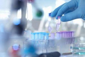 ¿Cómo afecta el coronavirus a la industria española de la curtición?