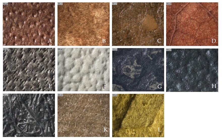 Diferentes materiales analizados en el estudio.