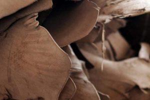 Los altos precios de las materias primas ponen en peligro la industria mundial del cuero