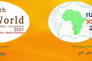 El Congreso de Iultcs y el Congreso Mundial del Cuero en Etiopía optan por un formato híbrido