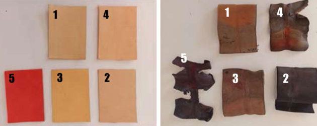Quimser: la biodegradabilidad del cuero