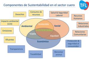 La importancia de la sostenibilidad en TFL