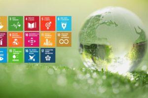Leather Química y su compromiso con la Agenda 2030